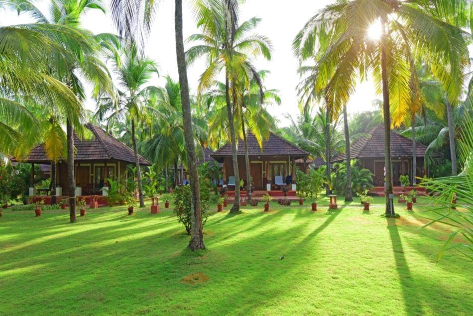 Indien Ayurveda Kuren Reisen In Sri Lanka Indien Europa